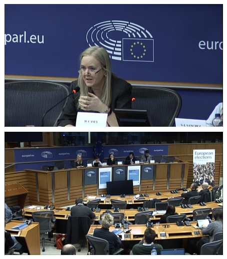 Professor Dympna Casey presents MARIO project at European Parliament seminar
